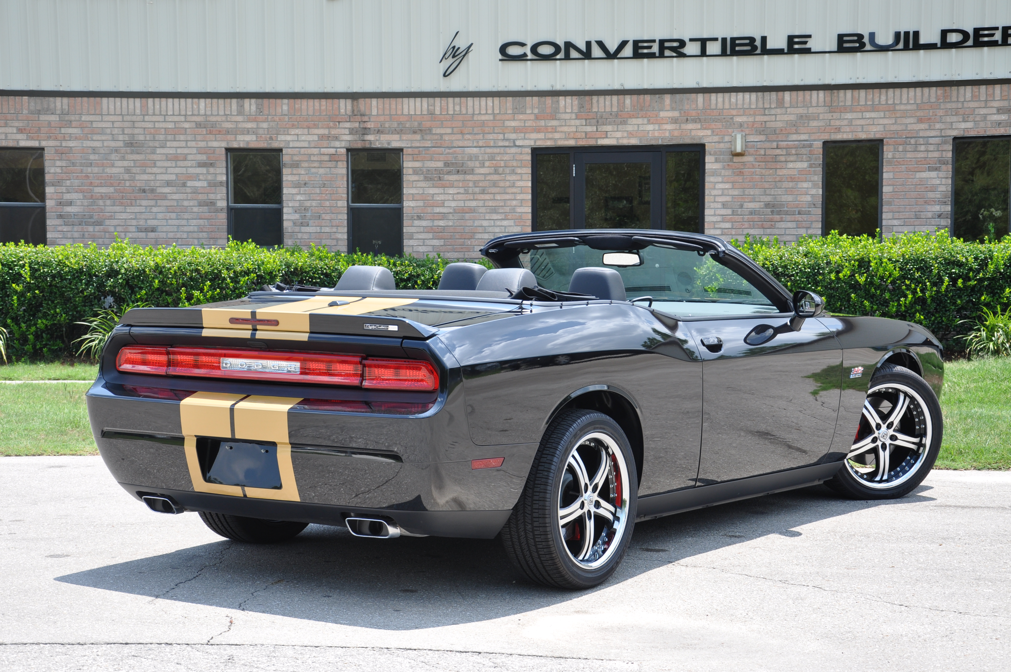 Black and Gold Challenger 1