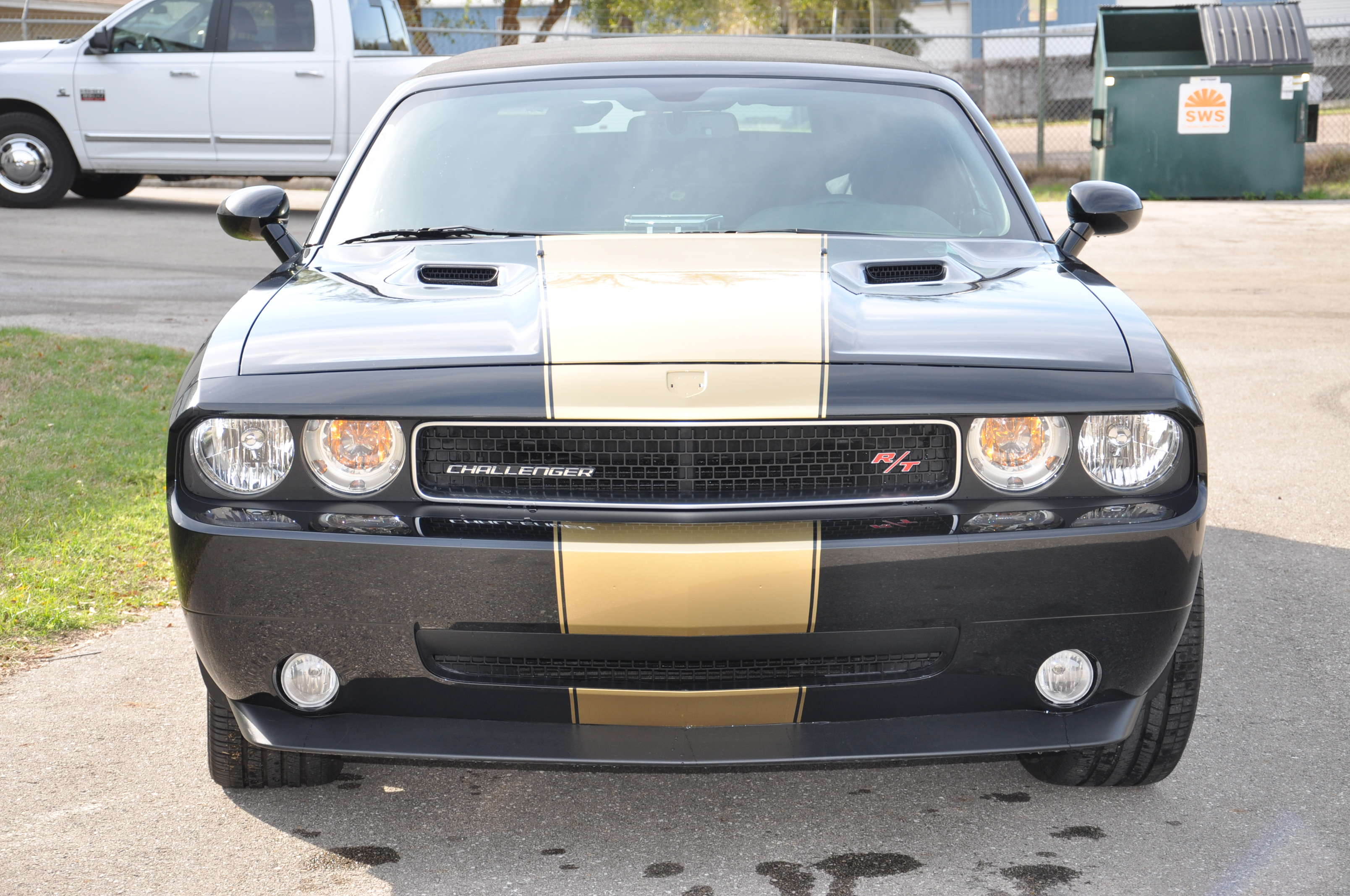 Black and Gold Challenger 2